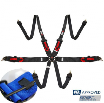 FHR 6-point harness